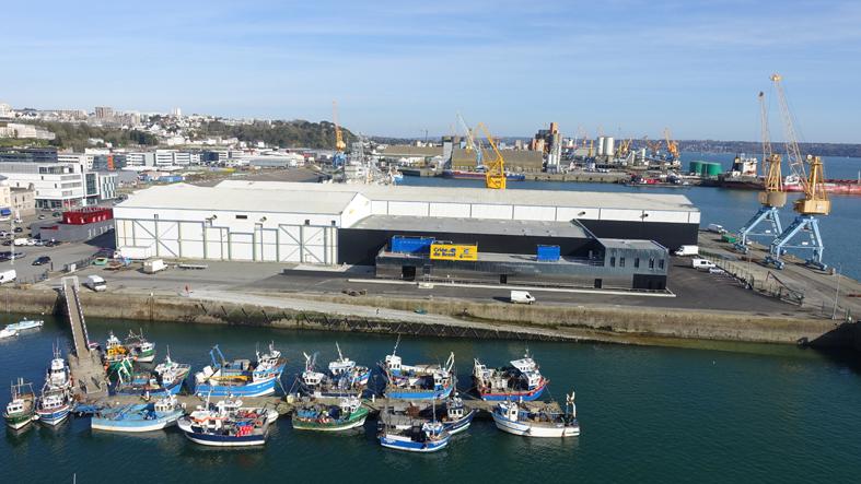 La criée de Brest - Panoramic Bretagne